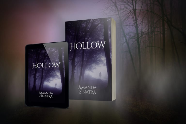 Amanda Sinatra 'Hollow' YA fiction
